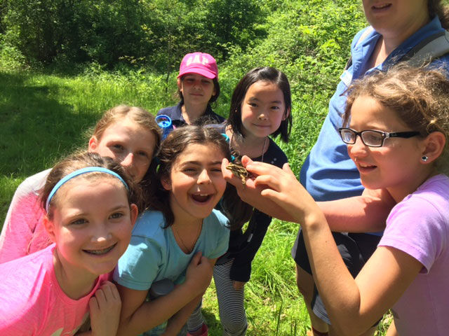 Watershed trip provides closer look at local ecosystems for kindergarten and third grade students