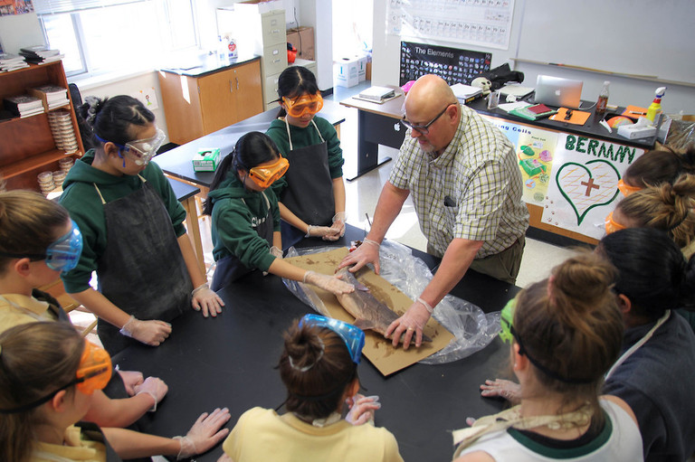 Are sharks and humans similar? Eighth graders dissect a dogfish shark to investigate