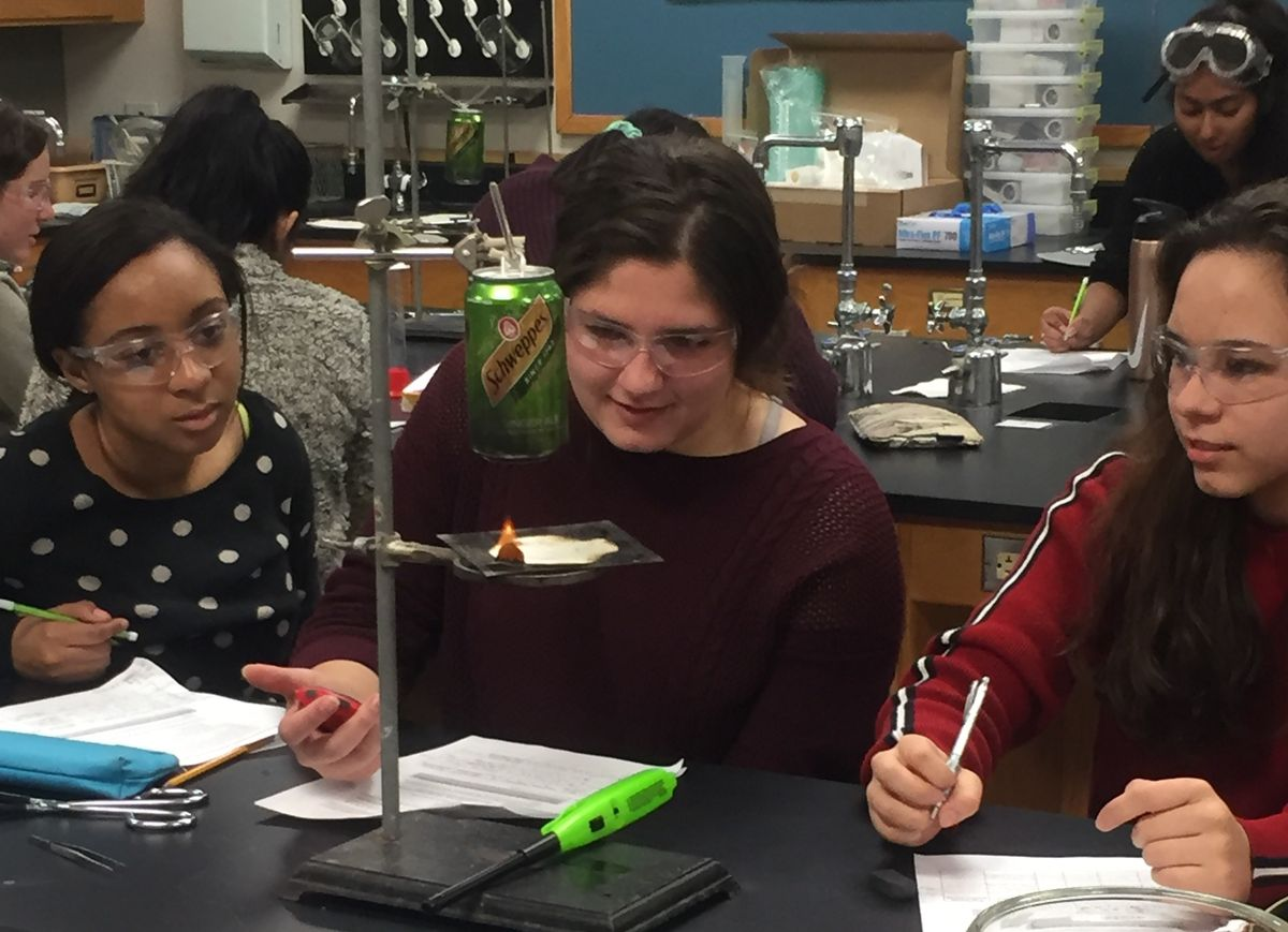 AP Environmental Science (APES) students study alternative energy with plant-based biofuels