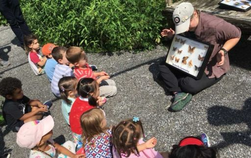 "Early Childhood children experience ""Butterfly Magic"" at The Watershed"